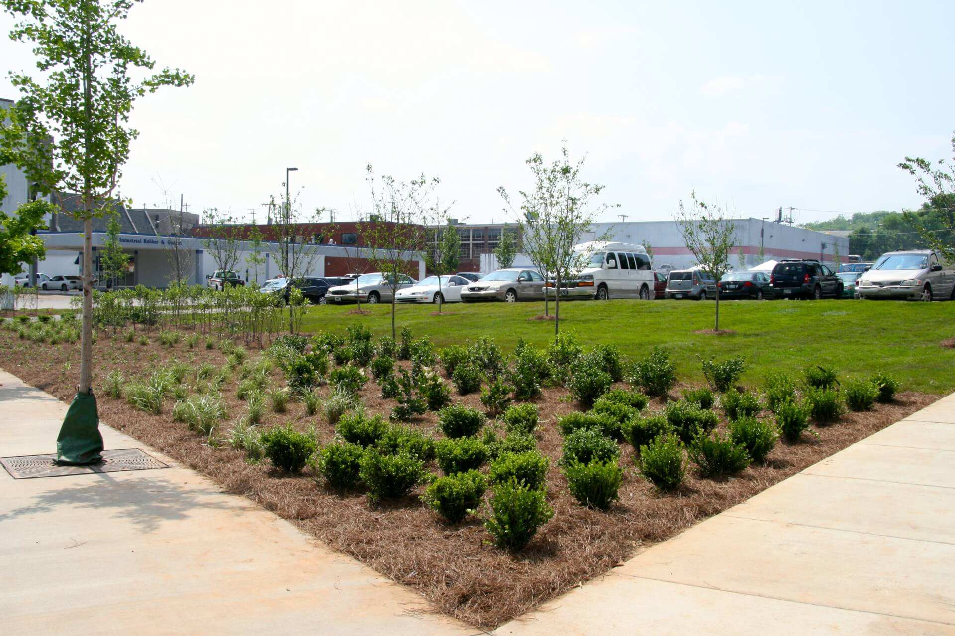 Nashville Rescue Mission with new landscaping and trees